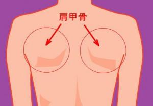 肩甲骨の歪みを治してバストアップ